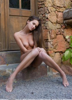 Young leggy brunette Simona shows her perfect curves nude